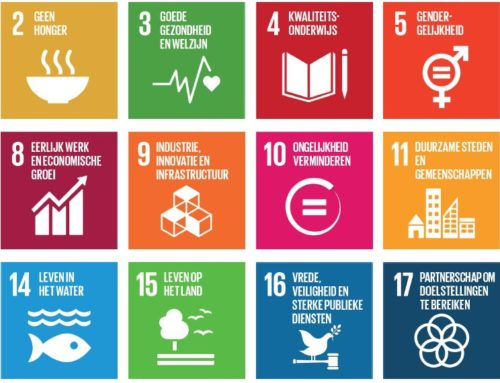 Global Goals als leidende principes